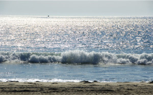 ocean wave sunshine