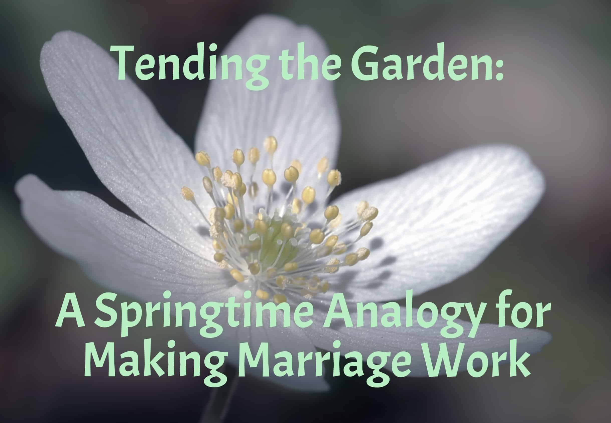 Tending the garden a springtime analogy for making marriage work engaged marriage for Tending to the garden